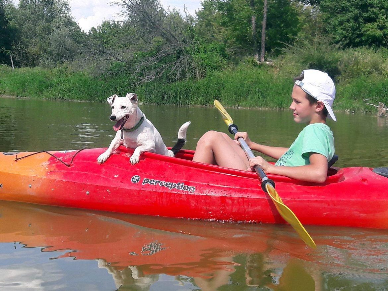 Dziecko z psem na rodzinnym spływie po Bugu. Spływy rodzinne Bugiem