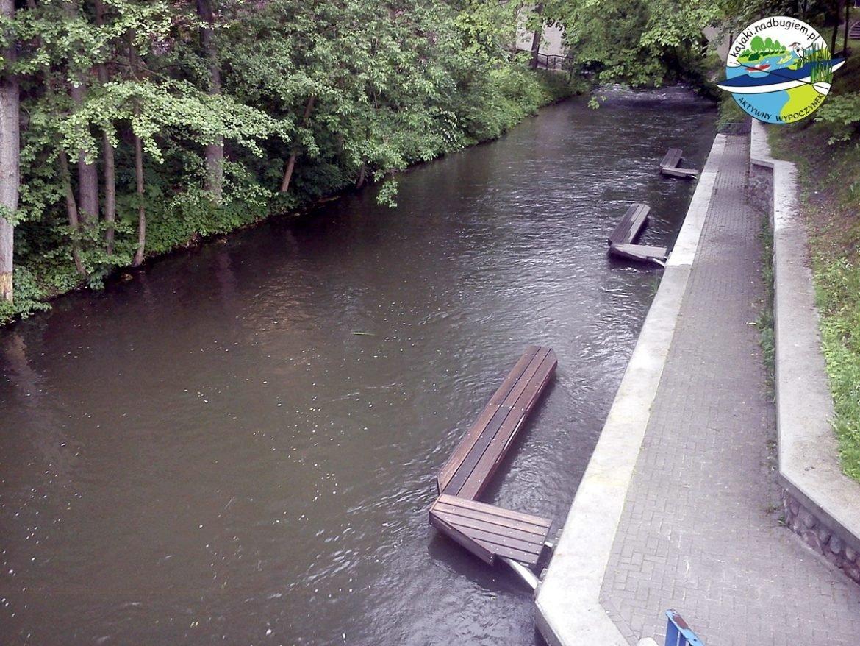 Łyna w Olsztynie