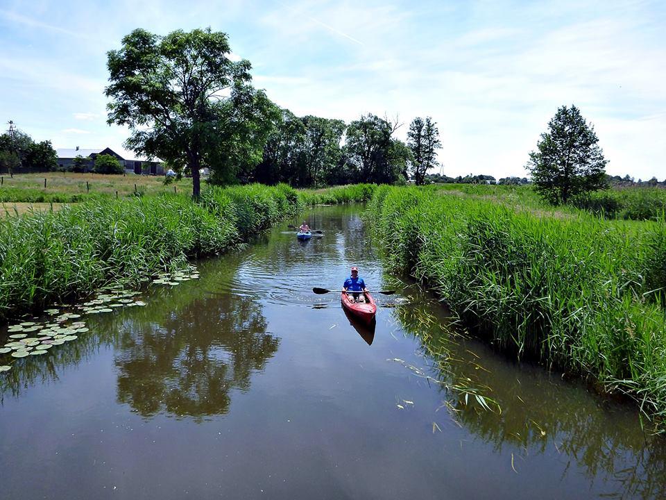 Spływ Zielawą i Krzną. Rzeka Zielawa . Jaz w Ortelu Królewskim