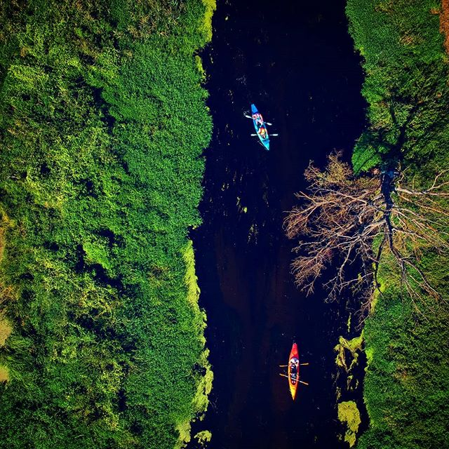 Rzeka Zielawa