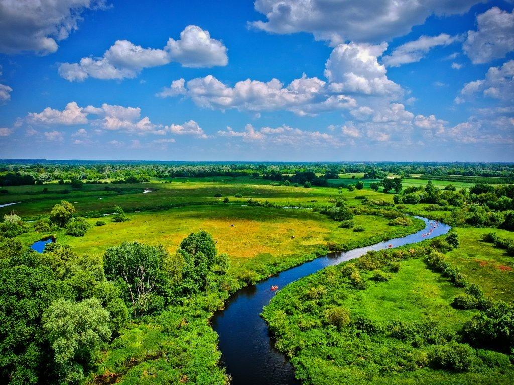 Widok na najpiękniejszy spływ kajakowy w Lubelskim. Weekend w kajaku