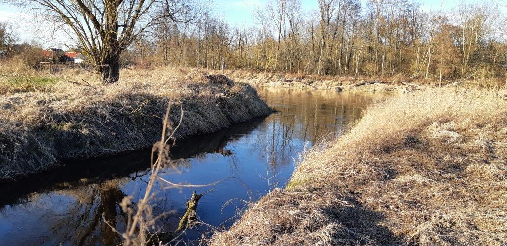 Rzeka Hanka - ujście do Bugu we wsi Kuzawka.