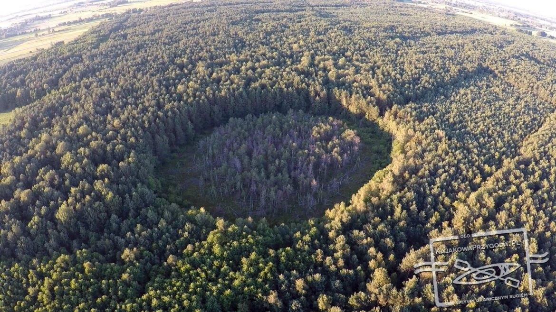 Leśny krąg, Tajemniczy Mucharyniec