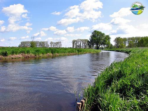 Rzeka Krzna w Białej Podlaskiej.