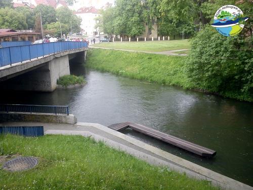 rzeka-lyna-w-olsztynie-2011 05 19-004