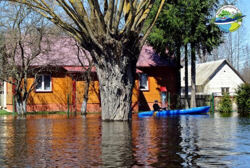 Powódź nad Bugiem 2013, rozlany bug, rozlewiska, roztopy, podtopienia, Sławatycze, Kodeń, Mościce