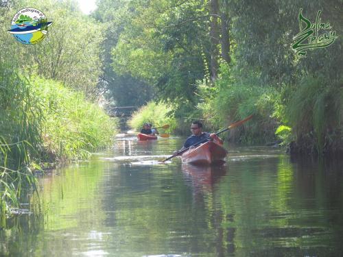 Spływ kajakowy po Zielawie, kajaki Zielawa, kajaki Studzianka, wypożyczalnia kajaków Zielawa